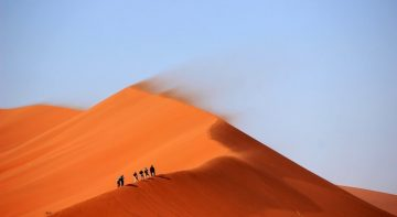 poušť