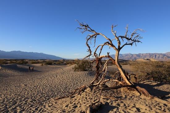 Údolí smrti