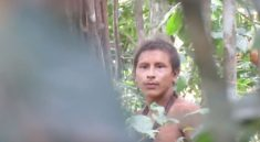 domorodec